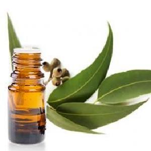 huile-essentielle-10ml-eucalyptus