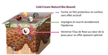 cold cream naturel